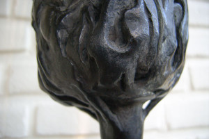 detail-onderkant-van-de-kruin400